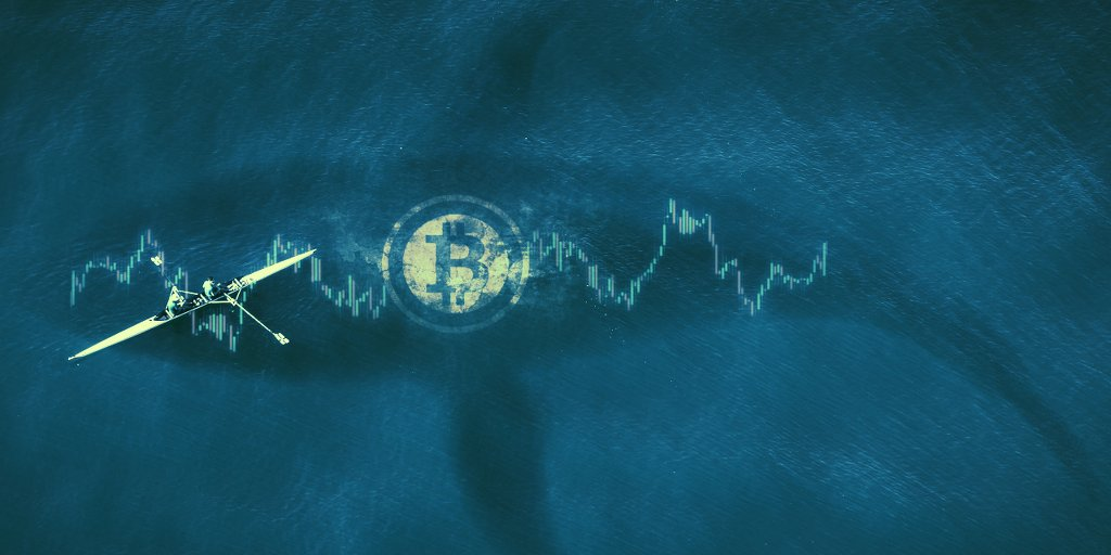 Bitcoin whales are multiplying—while also getting poorer: report