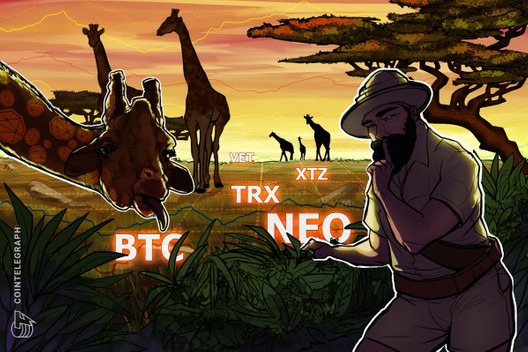 Top 5 Cryptocurrencies to Watch This Week: BTC, NEO, TRX, XTZ, VET