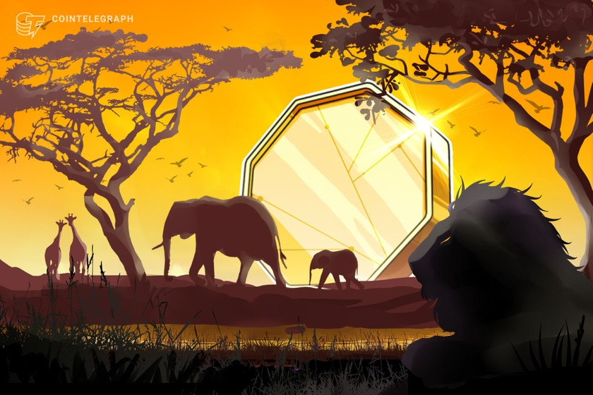 African traders least likely to fall for crypto scams: Chainalysis