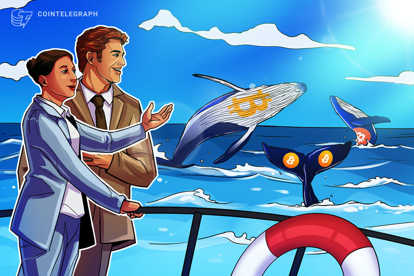 Cointelegraph Consulting: BTC whales buying big as retail goes bullish
